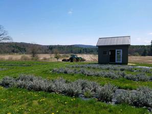 Plowing a new field