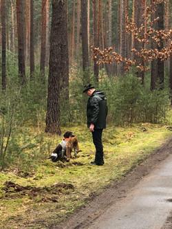 Bei der Ausbildung im Wald war Chica erfolgreich.