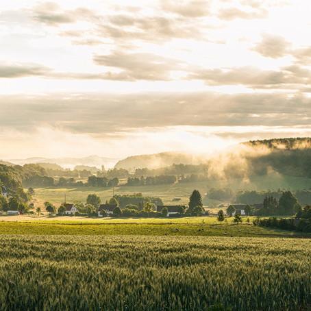 """Der """"Eifelsteig"""". Zu Fuß durch Märchenwälder und entlang erloschener Vulkane."""