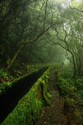 Sao Miguel / Azoren
