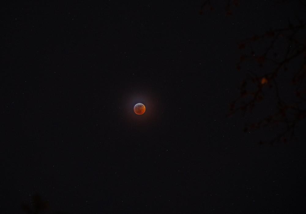 Lunar Eclipse January 2019 Victoria Harmon