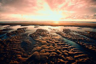 Seascape Voque 1-.jpg