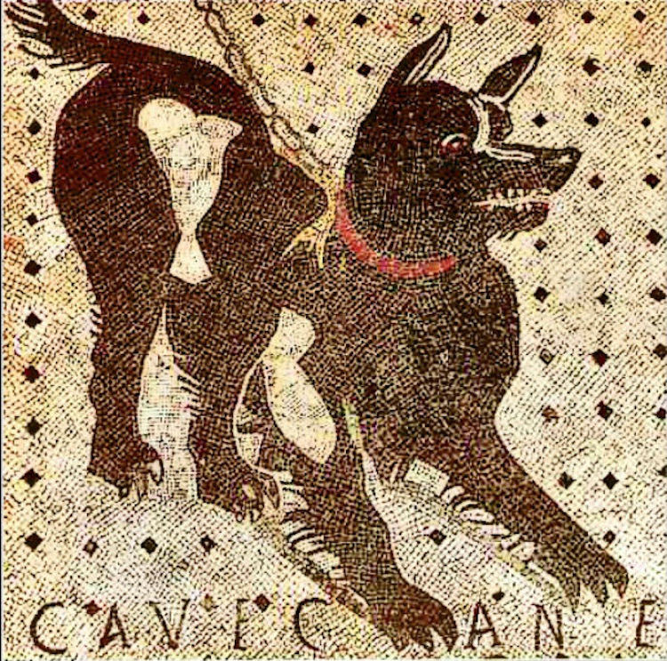 """""""Cave Canem"""" at House of the Tragic Poet"""