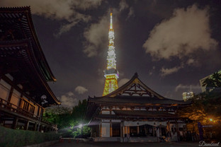 Japan Temple, Photography