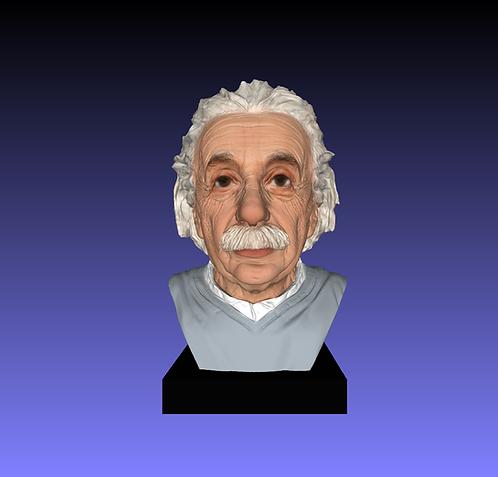 Einstein Bust Figure