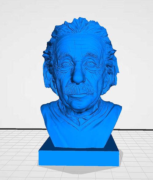 Einstein 3D Model