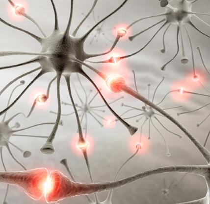 Черный тмин при рассеянном склерозе