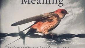 Book Review #13: Man's Search For Meaning