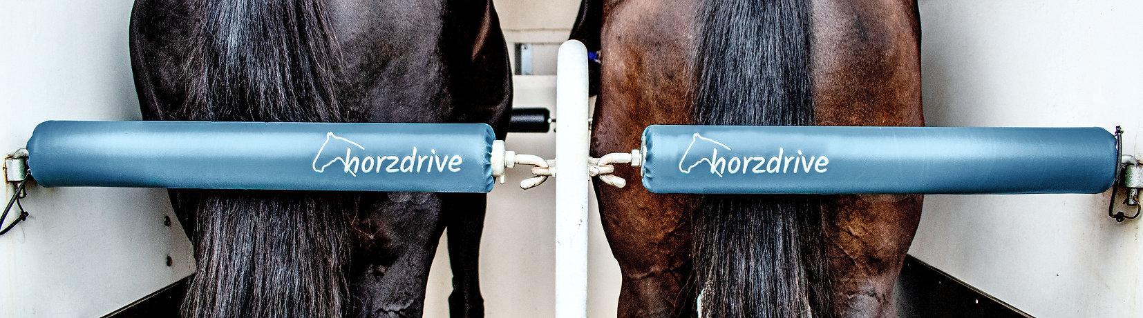 Polster Ausstattung Pferdeanhänger horzdrive