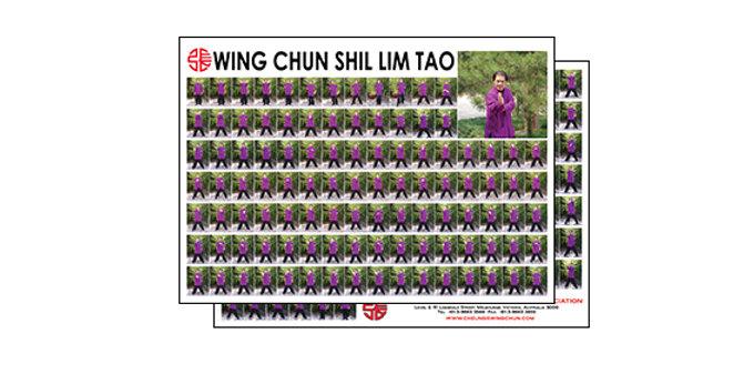 Posters - Wing Chun Shil Lim Tao