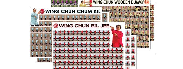 Wing Chun Poster Set