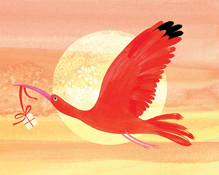 Scarlett Ibis By Jo Rooks