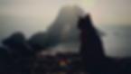 vlcsnap-2017-03-28-10h16m01s688.png