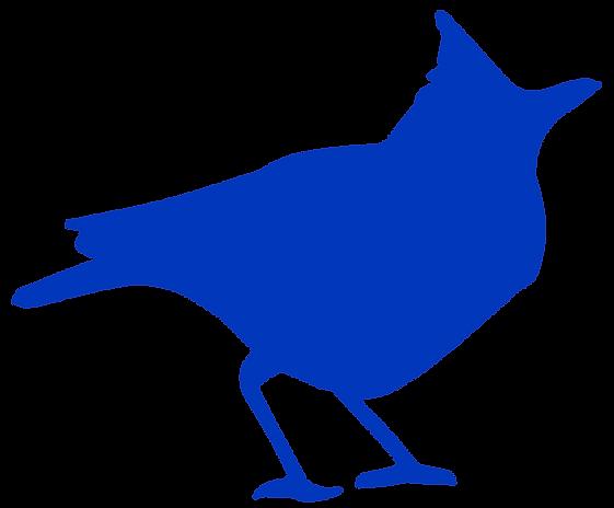 Blue-Lark.png