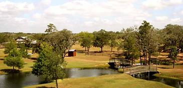 Pine Cove Crier Creek