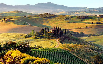 Toscana1.jpg