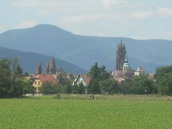 Panorama_Sélestat_2.jpeg