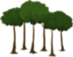 tree-576835_1280.png