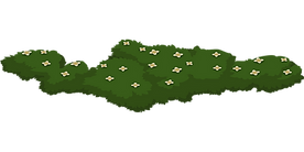 green-576278_1280.png