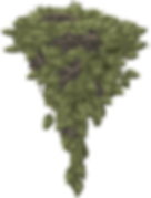 leaves-575683_1280.png