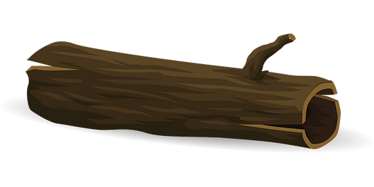 tree-576846_1280.png
