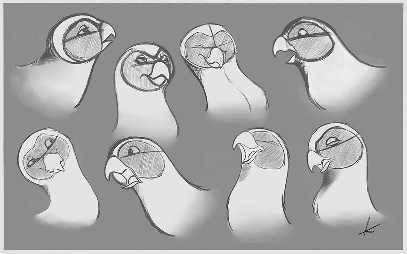 parakeet expressions again-Recovered-Rec