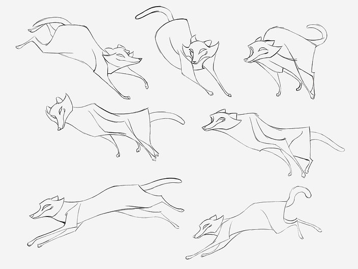 improving quality for raccoons sketches.