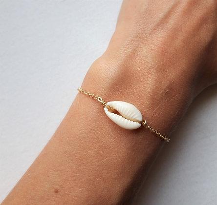Bracelet cauri naturel et chaîne argent 925 dorée à l'or fin