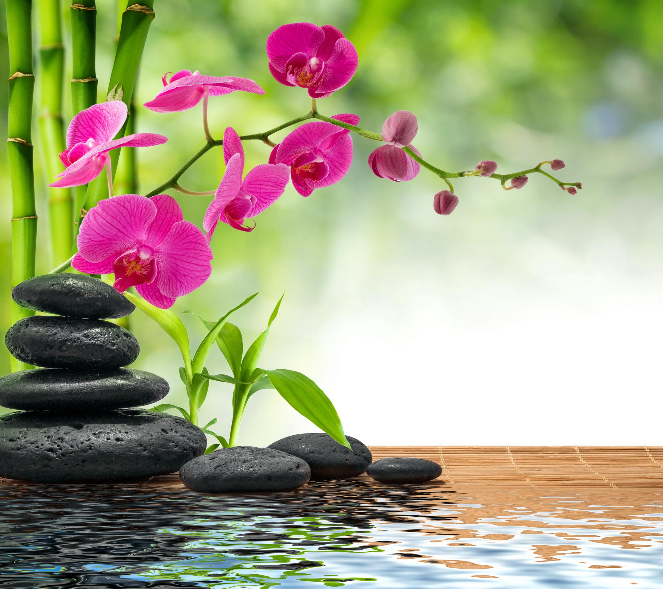 23.SPA Full Relaxation Program