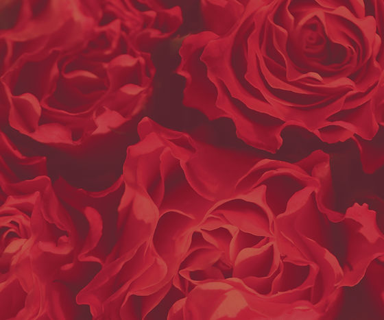 Website_BannerBackground_Roses-01.jpg