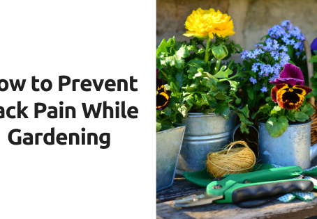 How to Prevent Back Pain Gardening
