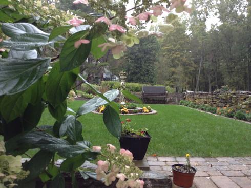 Garden Set in Mill Ruins