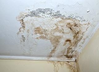 Asbestos Damage