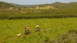 cross country mtb algarve portugal