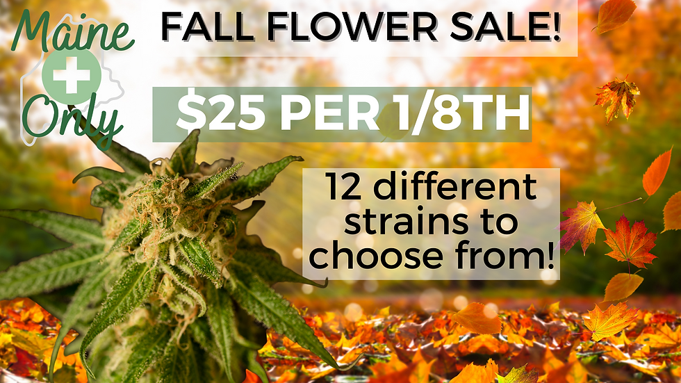 fall flower ad.png
