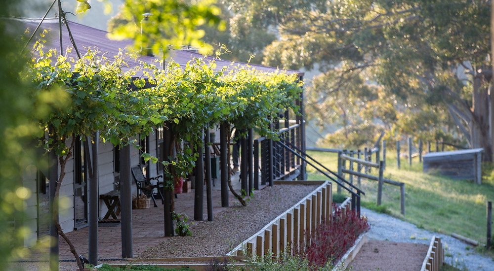House view of The Ridge House with grapevine cascading verandah