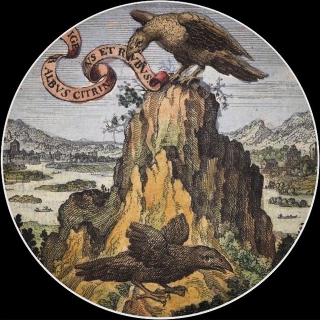 The Philosopher's Vulture
