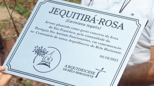 Comunidades de fé da Arquidiocese de BH se unem para plantar mudas de árvores em Parque no Castelo