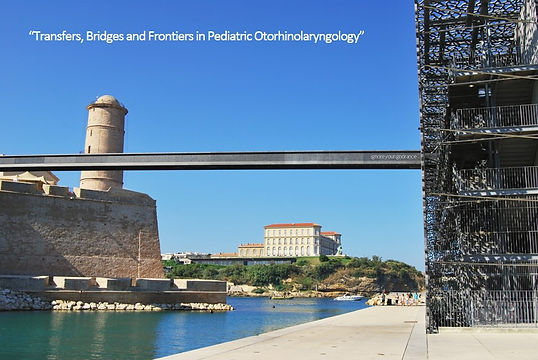 Bridge Marseille.jpg