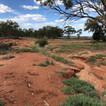 Potters Corner Legacy Mine, Condoblin, NSW