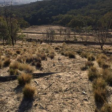 Apsley Mine, Perthville, NSW