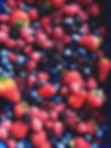 Un mélange de fruits rouges et baies fraichement cueillit