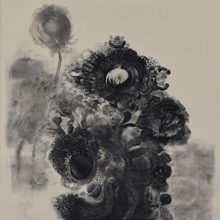 Florescencias (Flowers)