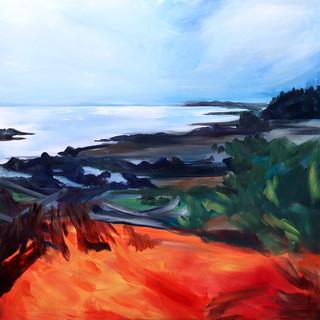 Ocean Tides;  Hornby Island