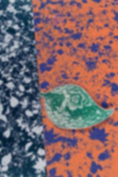 1.resurrection-leaf.jpg