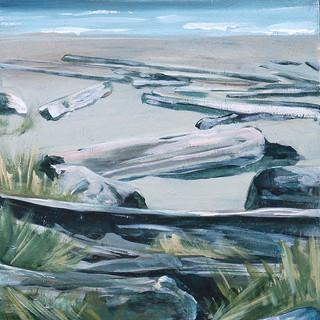 Earth's Shore;  Tofino