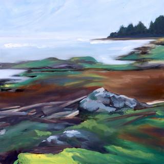 Tidal Daydream;  Hornby Island
