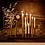 Thumbnail: le soliflore à réservoir