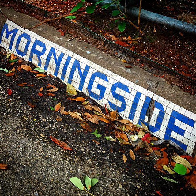 🙌🏼 Reppin Rice Village_ Make your way down Morningside. Bringing the Blue Tiles Back is our Busine