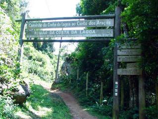 Um Encanto! Conheça a trilha da Costa da Lagoa